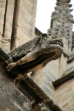 La Cathédrale - Gargoyle of the Cathedral