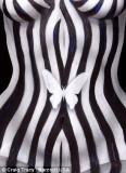 bodypt-stripes