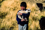 Aymara Boy with HPI Lamb