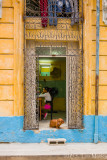 The Nail Shop