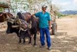 Carlos with Brahmas