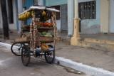 Fruit Cycle