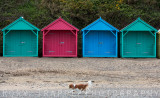 Beach huts at Llanbedrog