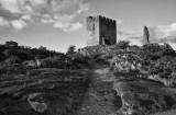 dolwyddelan castle bw2web.jpg
