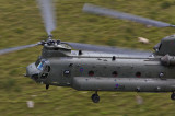 Chinook entering Cad from the south