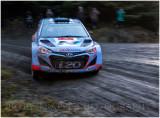 rally12.jpg