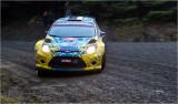 rally14.jpg