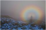 Brocken spectre. Taken this morning at Waun-Oer near Dolgellau