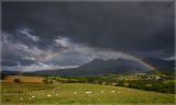 Rainbow over the Moelwyn