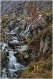 Stream from Llyn Bochlwyd