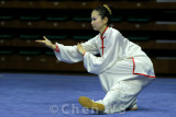 12th World Wushu Championships 2013
