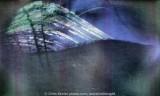 solargraph 2012-12-21 183 days 600dpi #2 v2.jpg