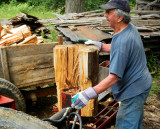 The woodcutter at work
