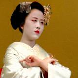 Today's Maiko Masaki