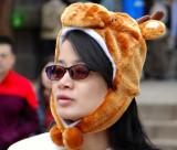 I'm a deer,a Sacred Deer.... :-)
