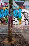 StreetArt-P.City-105.JPG
