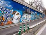 StreetArt-P.City-415.JPG