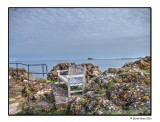 The Bench & The Bass Rock
