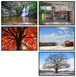 Stokes Co Greeting Cards