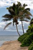 Oahu and Molokai