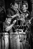 2013 Jazz Fest #12