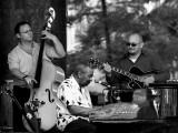 2013 Jazz Fest #13