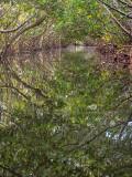 Woolverton Trail #6
