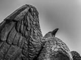 Memorial Park Eagle