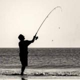 Beach Silhouette #5