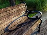 Riverwalk Bench