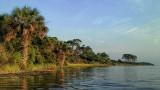South End of Guana Lake