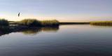 Guana River at Daybreak