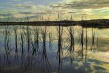 Upper Guana Lake 1