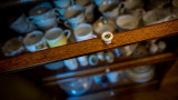 The Barrister's Teacups