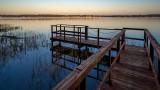 Lake Griffin at Dawn