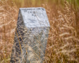 Headstone in the Grass