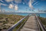 Boardwalk to the Beach II