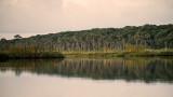 Sunrise West Bank of Guana Lake