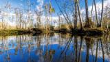 Pottsburg Creek 2017 Winter 3