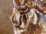 Marfy #1128 Bow on Waist Draping