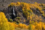 Bishop Creek Falls