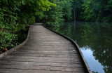 Powel Crosley Lake Wooden Walkway