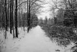 Path Less Traveled