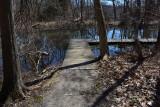 The Marsh Pond Wooden Boardwalk