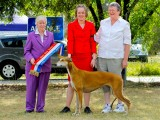 Fern wins Neuter in Show Nov 2012