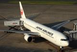 JAPAN AIRLINES BOEING 767 300 HND RF IMG_0252.jpg
