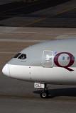 QATAR BOEING 787 8 JNB RF 5K5A1859.jpg