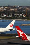 QANTAS JAPAN AIRLINES AIRCRAFT SYD RF 5K5A9801.jpg