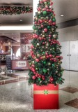Christmas Tree  3/12/13
