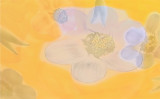 handpainted flower abstract